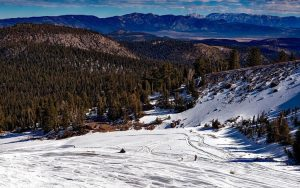 Winter Sports Foundation sports funding